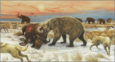 bear over bull