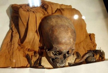 akhenaten-skull