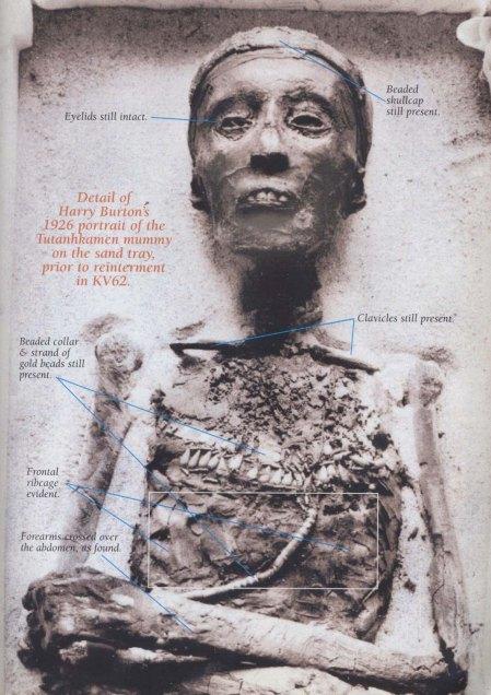 tut-photo-1926_kmt-magazine